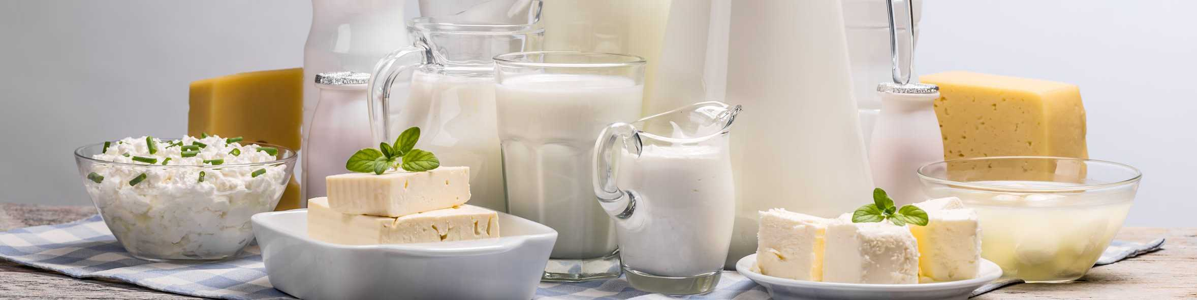 Milch, Käse,Quark,Frischkäse
