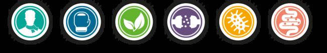 Icons zu den einzelnen funktionellen Gruppen im Darmflora-Check