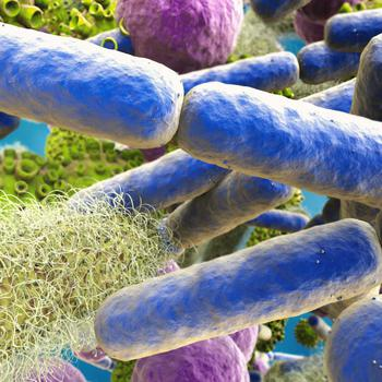 3D-Grafik von Bakterien, Viren und Pilzen