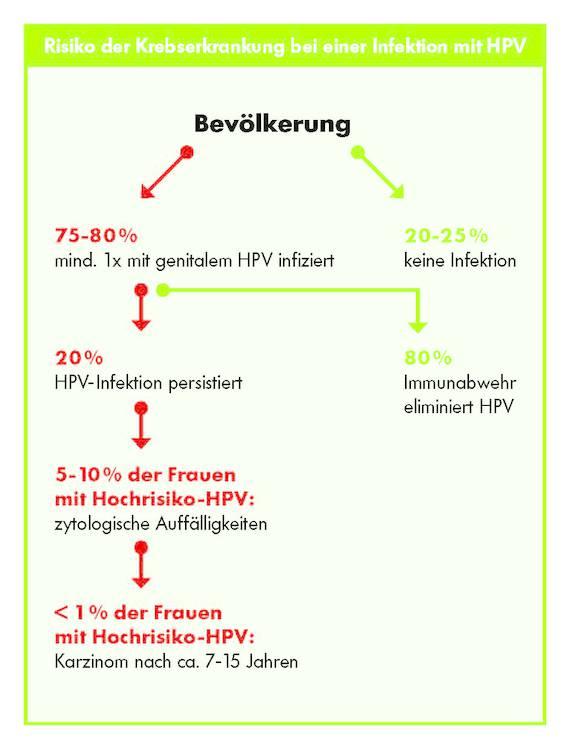 Schaubild: Risiko Krebsentstehung